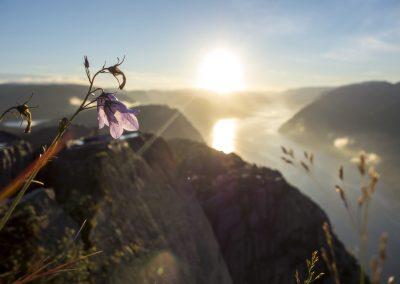 Outdoorlife-Norway_Preikestolen-Sunrise-Hike.20170807.27