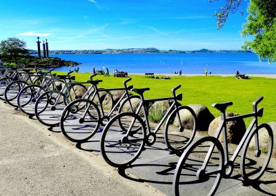 Biking in Hafrsfjord - Copy