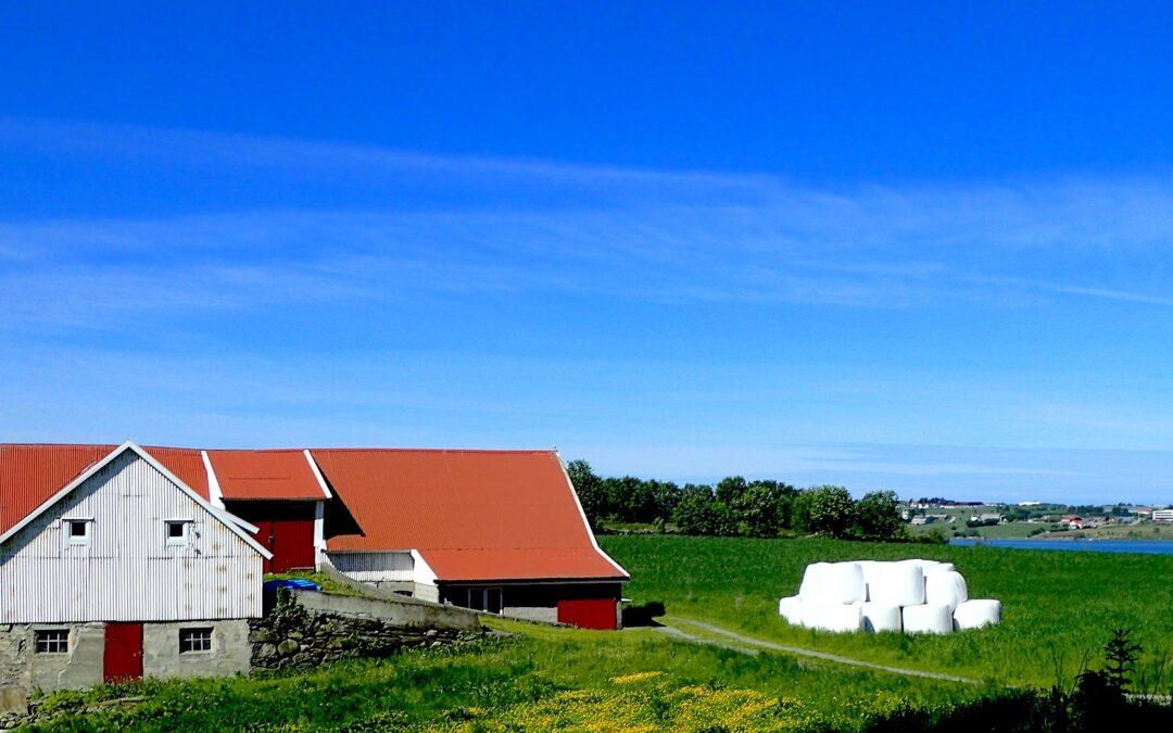 Farming area
