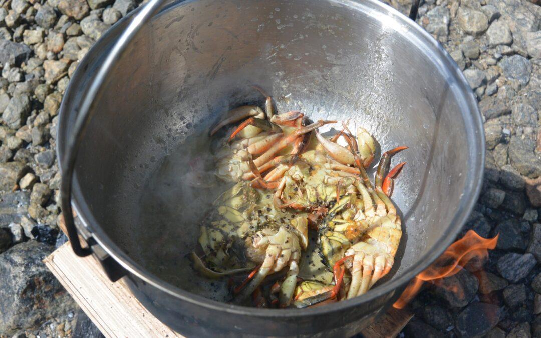 Kayak and fjord taste crab