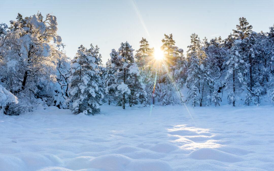 Preikestolen-Winter-Hike1