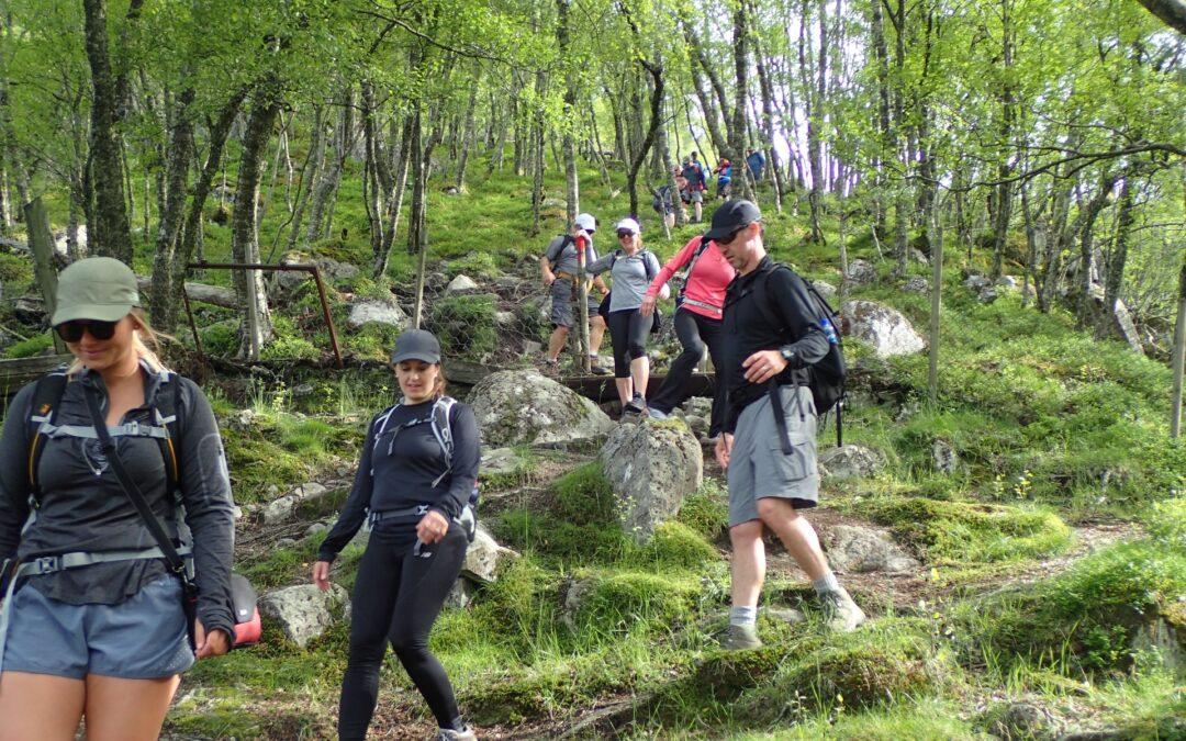 Steep trail towards Flørli